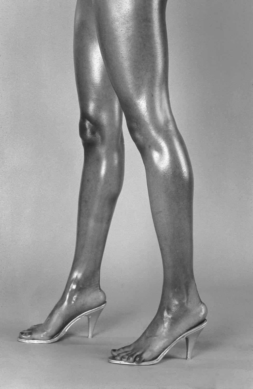 Legs_T15klein